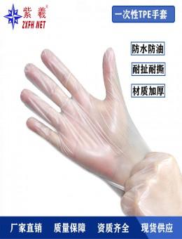 紫羲ZXFH.NET2020新款一次性手套TPE食品级手套餐饮烘焙